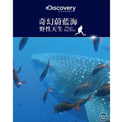 奇幻蔚藍海:野性天生 BD