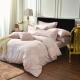 IN HOUSE-Begonia(pink)-300織精梳棉四件薄被套床包組(雙人) product thumbnail 1