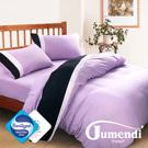 Jumendi-水鑽之星.紫 台灣製防蹣抗菌被套床包組-雙人