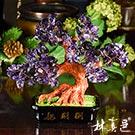 天然紫水晶貴人招財樹(8吋) 林真邑