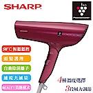 SHARP夏普 自動擊菌離子速乾吹風機/優雅紅 IB-GP9T-R