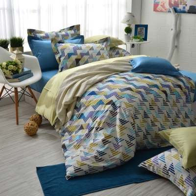 IN HOUSE-Sweden street-300織紗精梳棉-兩用被床包組(雙人)