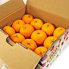 【鮮果日誌】桔祥如意椪柑禮盒(4台斤裝)