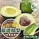 【天天果園】特選新鮮特大顆酪梨 x5台斤 product thumbnail 1