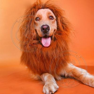 DYY》叢林之王狗狗變身搞怪帶耳朵獅子頭套S號-頸圍50cm以下