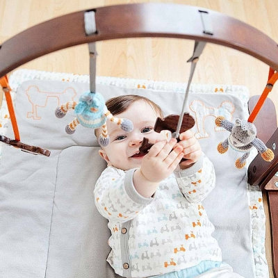 Finn + Emma 有機棉 Dark男寶寶款 嬰兒手抓玩具