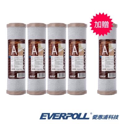 EVERPOLL愛惠浦科技 10英吋CTO活性碳濾心EVB-C100A [買4+送1]