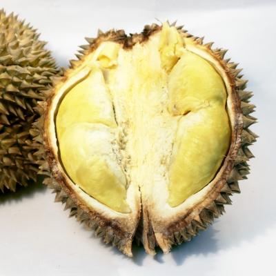 鮮果日誌 - 泰國產水果之王金枕頭榴槤(20斤重原箱約3~4顆)