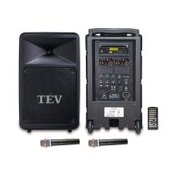 TEV DVD/CD/USB/SD雙頻無線擴音機 TA780D-2