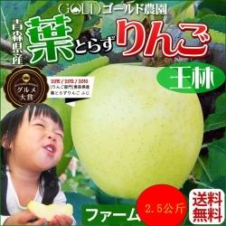 果之蔬-日本日本青森縣 王林蘋果10-12入