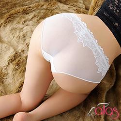 三角內褲 朦朧薄紗透明性感內褲 (白色) alas