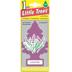Little Trees美國小樹香片(薰衣草)-急速配