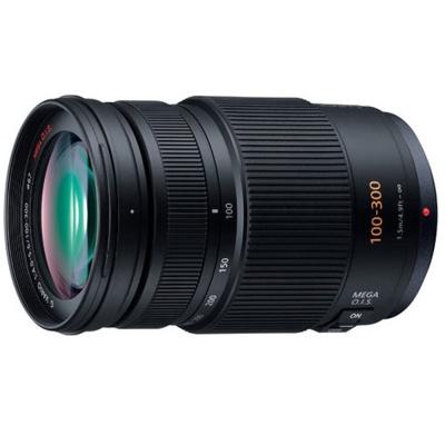 Panasonic-LUMIX-G-VARIO-100-300mm-F4-5-6-公司貨