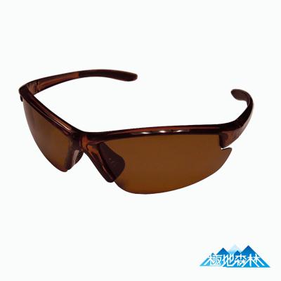 極地森林-棕色TAC寶麗萊偏光鏡片運動太陽眼鏡-7703