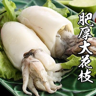 【海鮮王】特級肥厚大花枝 *2件組(500g±10%/2隻裝)