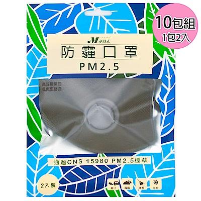 淨舒式 防霾口罩PM2.5(含呼吸氣閥) (10包組一包2入)(黑)