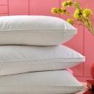 Cozy inn 飯店式側立羽毛枕(1入)