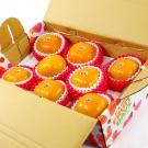 鮮果日誌 - 9A摩天嶺富有甜柿(8入裝)