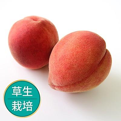 【果物配】五月桃禮盒_友善農法1.35kg±10%(8顆入)
