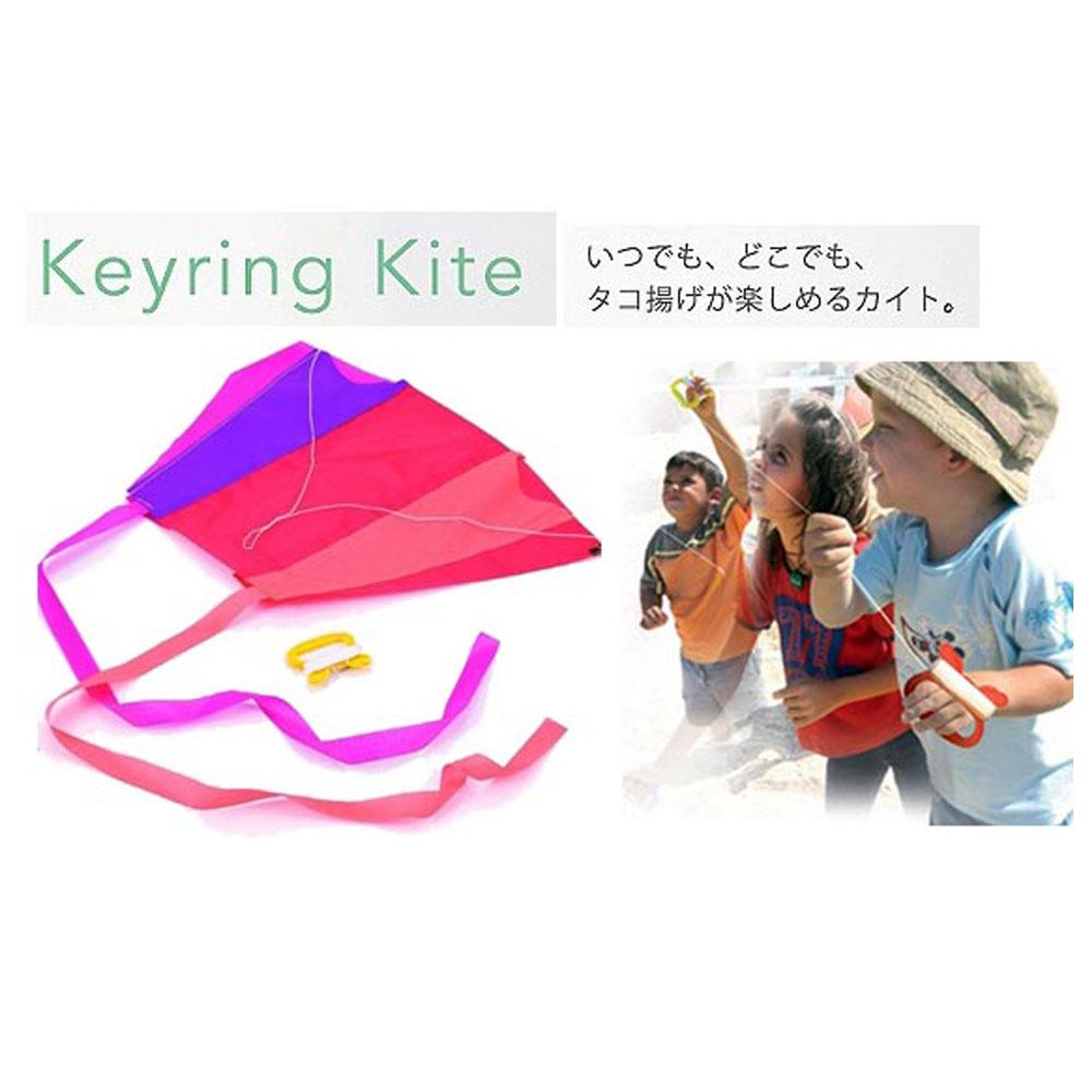 賽先生科學 日本POCKET KITE輕巧摺疊式口袋風箏(2入)(顏色隨機出貨)