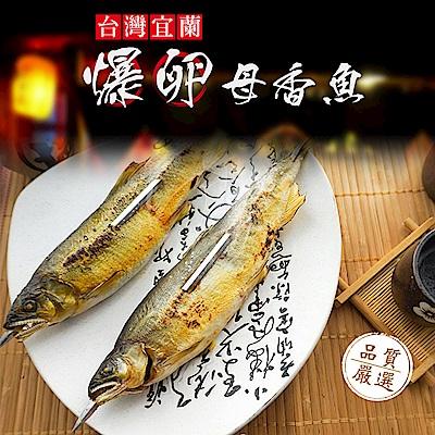 馬姐漁鋪 宜蘭XXL超爆卵母香魚(3尾/包)