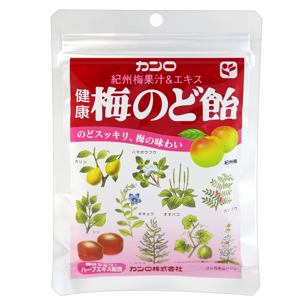 Kanro 龍角散袋糖-梅子(90g)