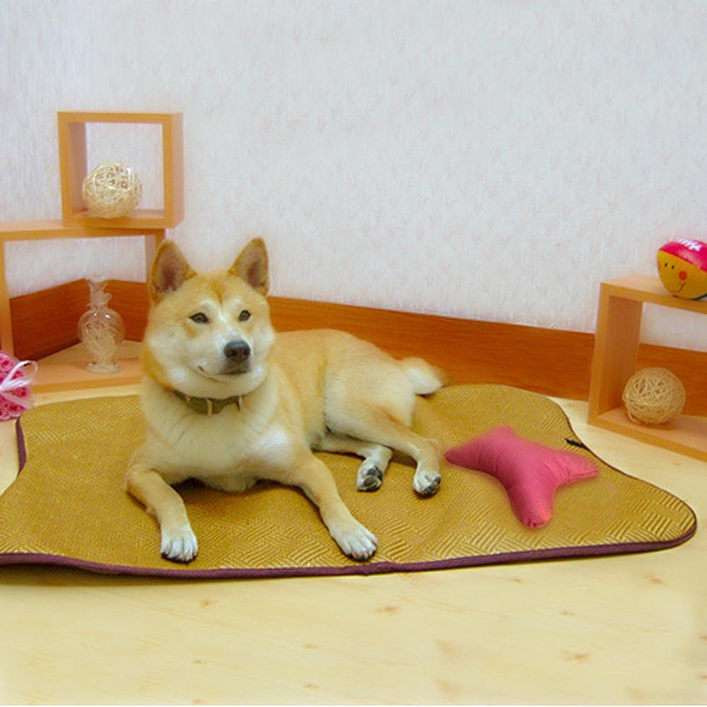 《凱蕾絲帝》寵物紙纖透氣止滑鋪棉睡墊 (小)