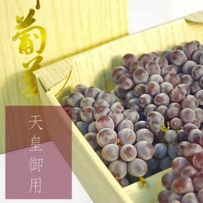 鮮果日誌 - 山梨縣 溫室珍珠葡萄1kg (5-6房)
