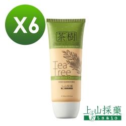 tsaio上山採藥 茶樹抗痘調理洗顏乳100g 6入組