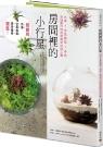 房間裡的小行星:水草x空氣鳳梨x多肉,自組創作超療癒微型玻璃花園
