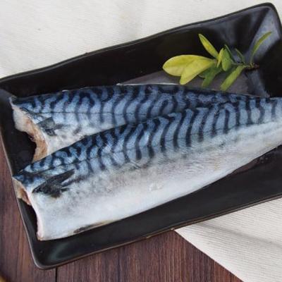 馬姐漁舖 特選挪威深海薄鹽鯖魚片10片組(160g/片)