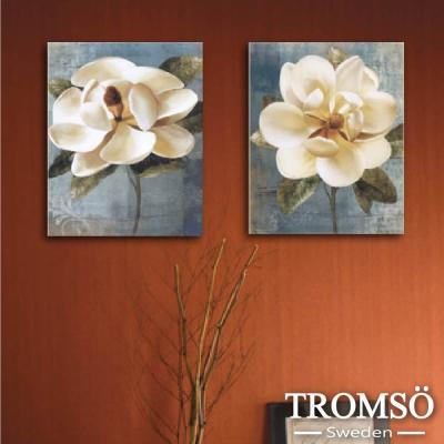 TROMSO時尚無框畫 二聯式-獨領春風
