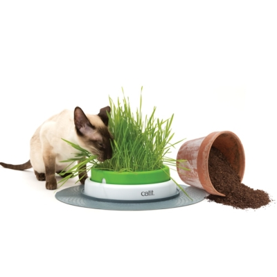 喵星樂活 CATIT2.0 貓草種植盤