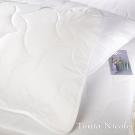 Tonia Nicole東妮寢飾 竹纖平單式枕頭保潔墊(2入)