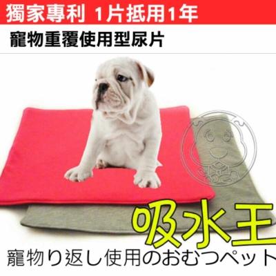 拜客》重覆使用超吸水寵物尿墊L號15kg以上顏色隨機(環保|省錢)