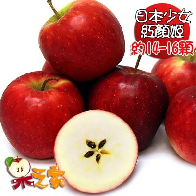 果之家 日本少女紅顏姬蘋果XL特級禮盒5公斤(約14-16顆)