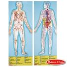 美國瑪莉莎 Melissa & Doug 大型地板拼圖 - 人體解剖學 100片