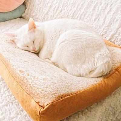 寵喵樂 犬貓用仿真吐司造型睡墊