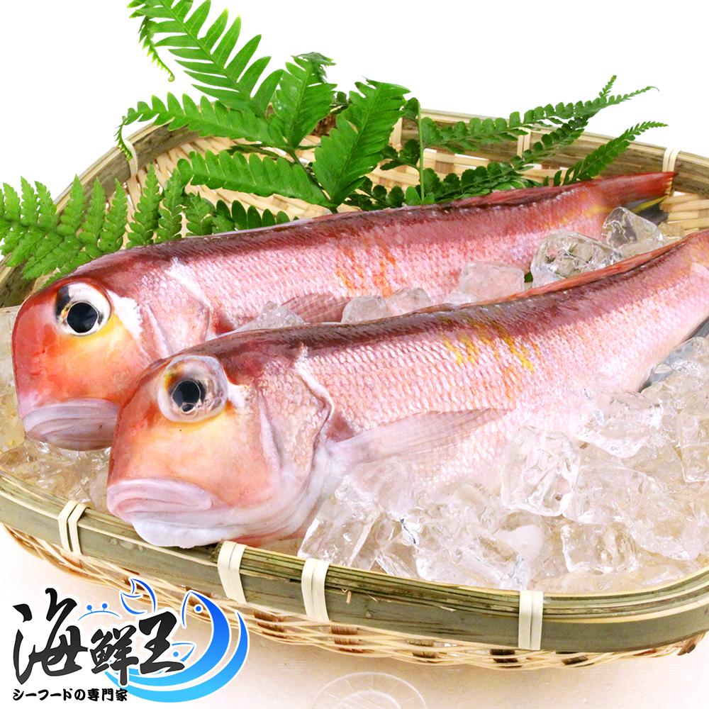 【海鮮王】野生鮮嫩馬頭魚*6包組(2尾/包)(200g±10%/尾)