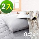 法國Jumendi-清新竹韻 台灣精製竹炭舒眠枕-2入