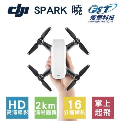 DJI SPARK空拍機 全能套裝 初雪白(飛隼公司貨)