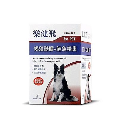 樂健飛 L.C.F 犬用免疫力《褐藻醣膠+鮭魚精巢》60粒/罐