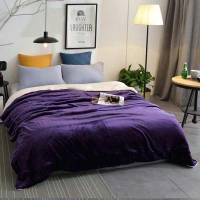 Artis - 羊羔絨法蘭絨雙層暖毯-紫色