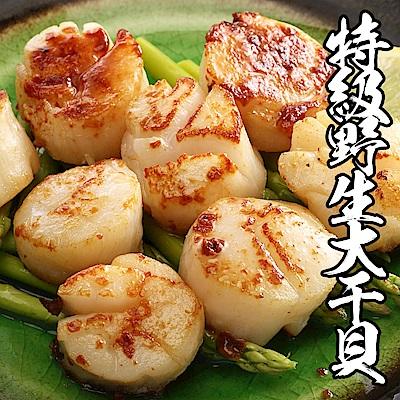 【海鮮王】特級野生超大干貝 *4包組(500g±10%/包/8-10顆)