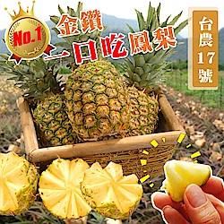 (滿799免運)【天天果園】台灣一口吃蜜鳳梨3顆(每顆約500-750g)