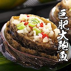 【海鮮王】巨肥鮮美大鮑魚 *2包組(800g±10%/10顆/包)