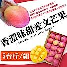 【果之蔬】外銷日本A級愛文芒果5台斤(約10-12顆)