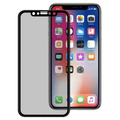 LUCCIDA Apple iPhone X 3D冷雕防窺片【滿版】