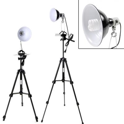 digiXtudio專業直立型30w標準白光攝影燈