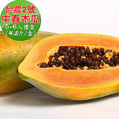 愛蜜果 屏東台農2號中春木瓜禮盒 (4.5斤/5-6顆)